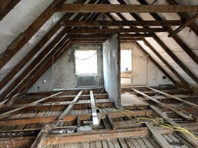 Borebiller på loftet - behandling af borebiller