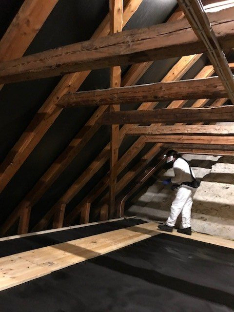 behandling mod borebiller på loft i Alstrup Kirke